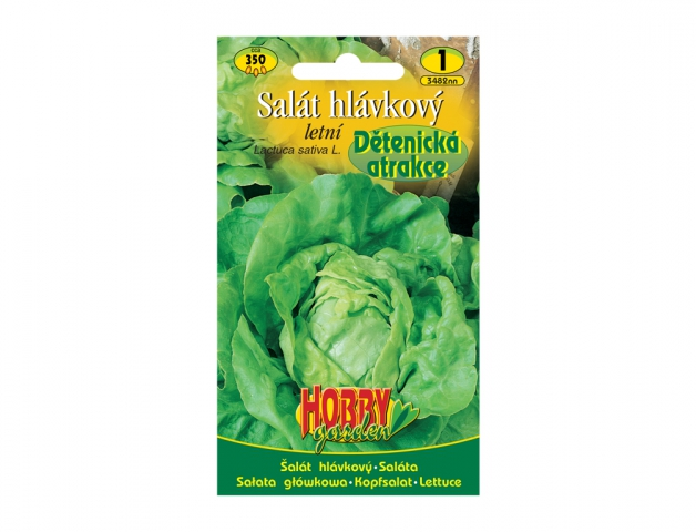 Salát hlávkový letní DĚTENICKÁ ATRAKCE NG HOBBY GARDEN