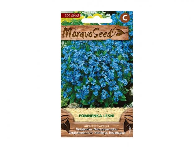 Pomněnka lesní, modrá 20380 MORAVOSEED